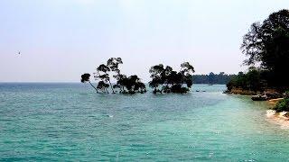 Trip To Andamans  | Andaman Islands | Andaman And Nicobar | Havelock | Jolly Buoy | Port Blair |