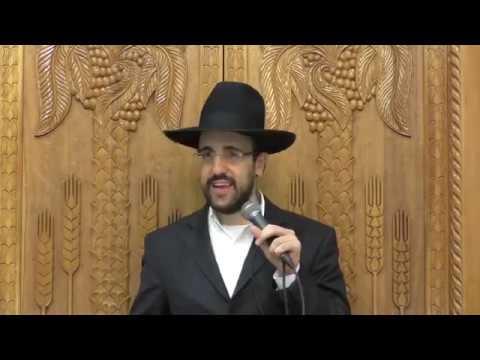 הרב מאיר אליהו הרצאה ברמה גבוהה על ימי בין המצרים סגנון מיוחד מומלץ בחום למי שלא מכיר