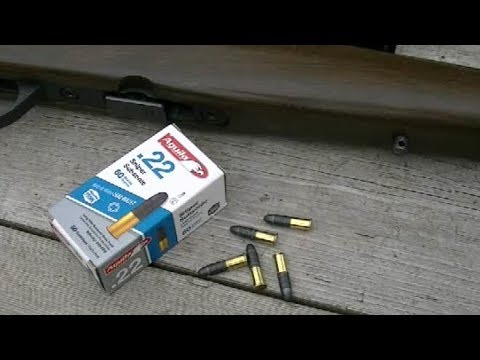 Aguila  .22 Sniper Subsonic Ammo Test