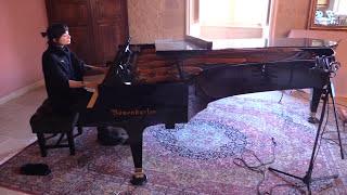 Guns N' Roses - Sweet Child O'Mine played on  Bösendorfer Imperial