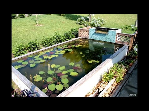 Koi Pond build UV Clarifier and filtration