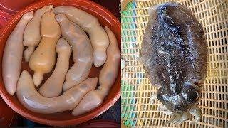 한국 시장 음식-기괴해도 중독성! 통영중앙시장 참개불, 갑오징어 회썰기 [맛있겠다]
