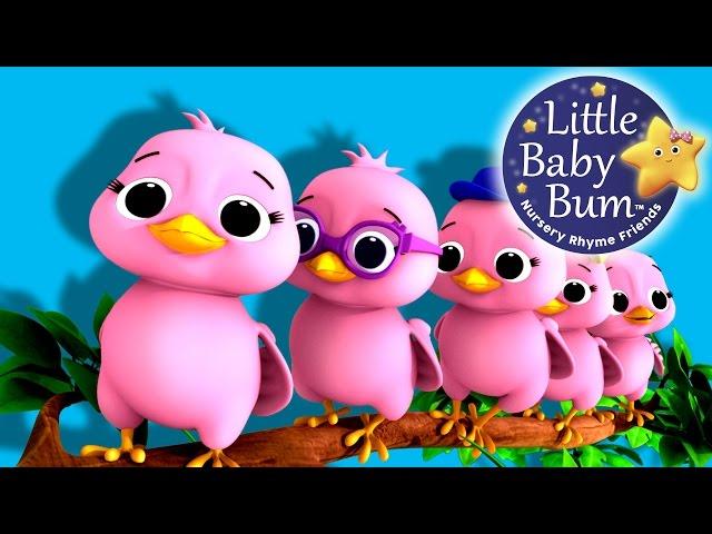 Five Little Birds | Nursery Rhymes | Original Song based on