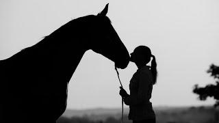 ~Equestrian Sport~Моя Москва~Castle~Конный Спорт~by Equestrian Sport Clips~