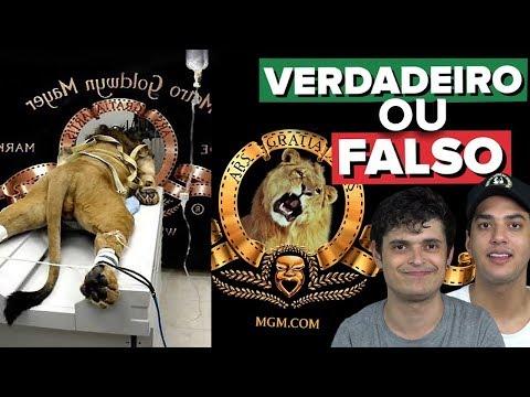 AMARRARAM O LEÃO PARA GRAVAR A VINHETA - VERDADEIRO OU FALSO??