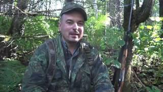 Обучение охоте на рябчика Часть 1-Введение