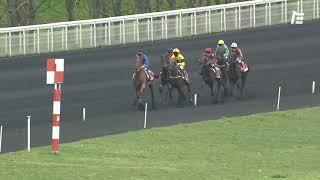 Vidéo de la course PMU PRIX HOLLY DU LOCTON