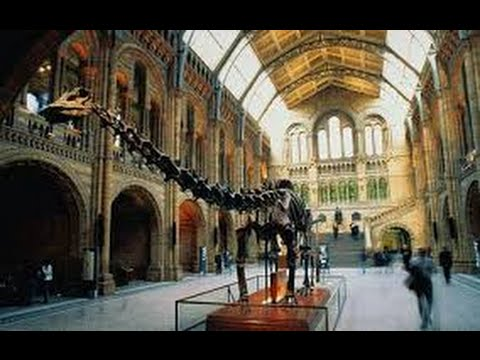 My trip to The National History Museum