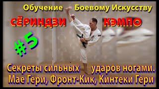 5 Секреты сильных ударов ногами Кери Аге Кинтеки Гери Маэ гери Фронт кик front kick mae geri