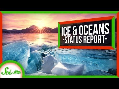 Our Oceans Aren't Doomed… Yet? | SciShow News