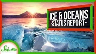 Our Oceans Aren't Doomed… Yet?   SciShow News