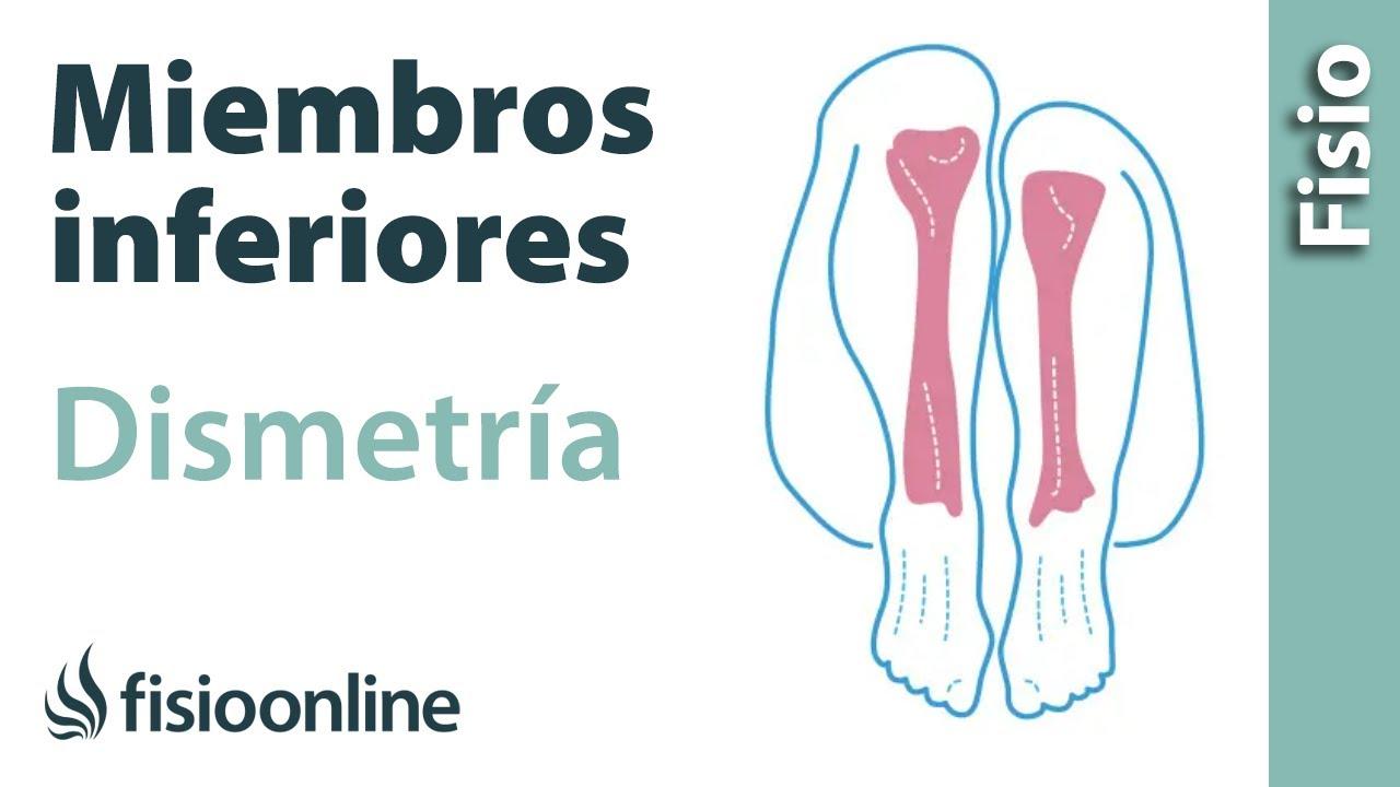 Como se llama el hueso mas largo de la pierna