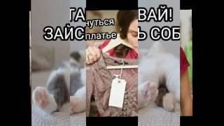 Индивидуальная программа питания диетолога Елены Анисимовой