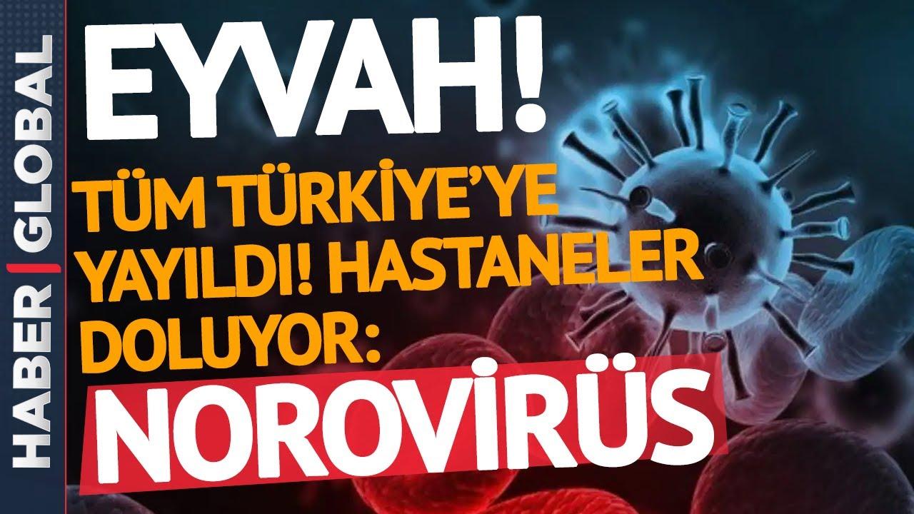Download DİKKAT! Türkiye'de Yeni Bela! Korona Değil Norovirüs!