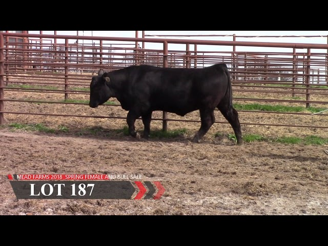 Mead Farms Lot 187