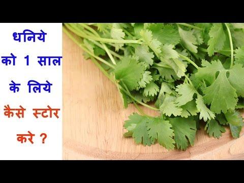 How To Store Dhaniya Leaves For 1 Year | धनिया 1 साल के लिए कैसे स्टोर करे