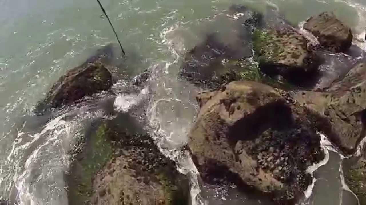 Fishing humboldt bay north jetty youtube for Eureka ca fishing