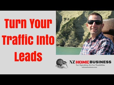 Turn Your Traffic Into Leads
