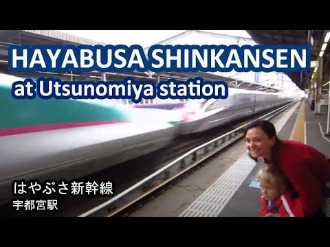 Hayabusa Shinkansen at Utsunomiya Station