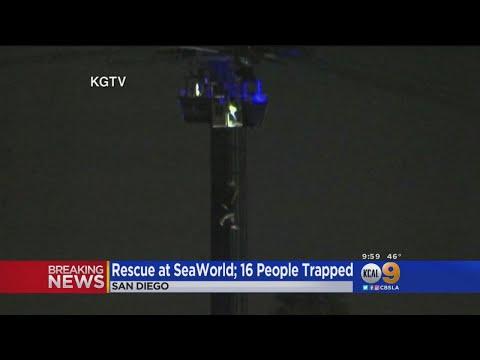 Rescue Underway At SeaWorld San Diego