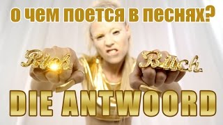 О чем поет Die Antwoord?//Banana brain, Baby's on fire