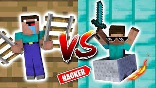 Noob VS. Pro Roller Coaster Challenge - Minecraft Animation