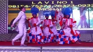 Lavi no. 1 musical group 9815475374 ,7837309326