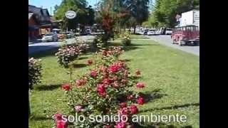 El Bolsón civic center - Río Negro - Argentina