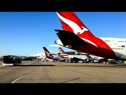 Sydney Airport Domestic To International Bus Transfer