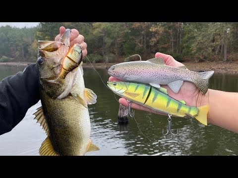 Do GIANT BAITS Catch BIG FISH??? (Experiment)