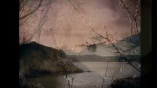 Pink Moon: Nick Drake (For Jane)