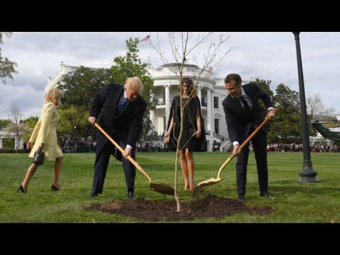 ترامب يستقبل ماكرون في البيت الأبيض في بداية زيارة دولة تستغرق ثلاثة أيام  - نشر قبل 2 ساعة