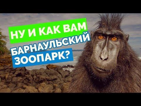 Зоопарк в Барнауле, честный отзыв в самом конце)
