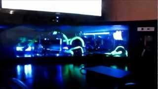 Best Custom Computer Desk - Gaming Setup Liquid Cooled