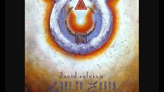 Watch David Sylvian Taking The Veil video