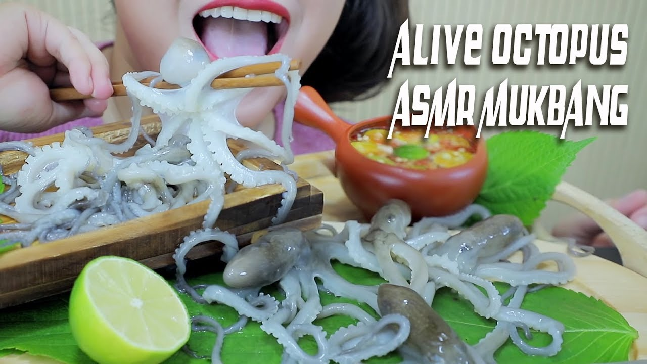 ASMR EATING ALIVE OCTOPUS (EXOTIC FOOD) EXTREME CHEWY EATING SOUNDS   LINH-ASMR