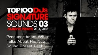 Top 100 DJs Signature Sounds Vol 3 - Massive Patches