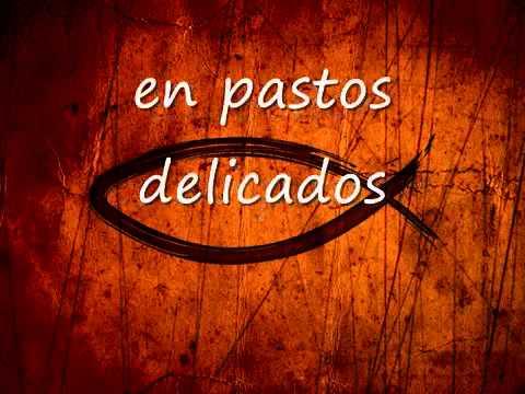 Danilo Montero  El señor es mi pastor pista wmv