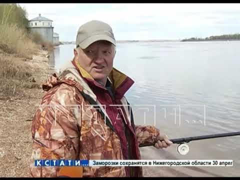 На берегу реки обнаружено обезглавленное тело с хирургически вырезанными легкими