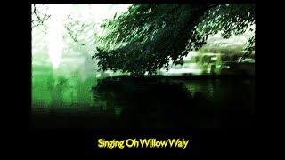 """Dark Willow"" - Flowers n Kites & Ashley Serena"