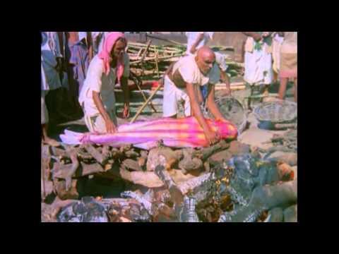 Шокирующая Азия 1976 1 часть