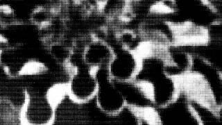 Vril - V8 [Giegling Staub 07]