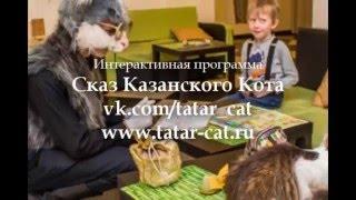 Казанский Кот в котокафе Мурзик Казань
