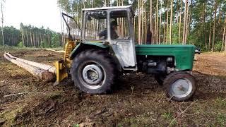 Ursus C360 - Najlepszy traktor w lesie || Zrywka drewna