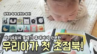 신생아 장난감 추천 휴대가 간편한 초점북 타프토이즈 -…