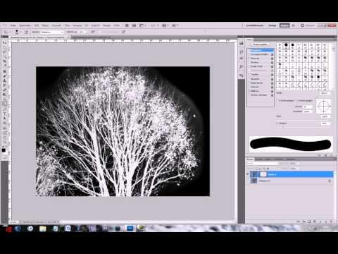 Photoshop freistellen und hintergrund andern