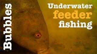 Bubbles -  Underwater tench fishing - Breamtime S3 E6