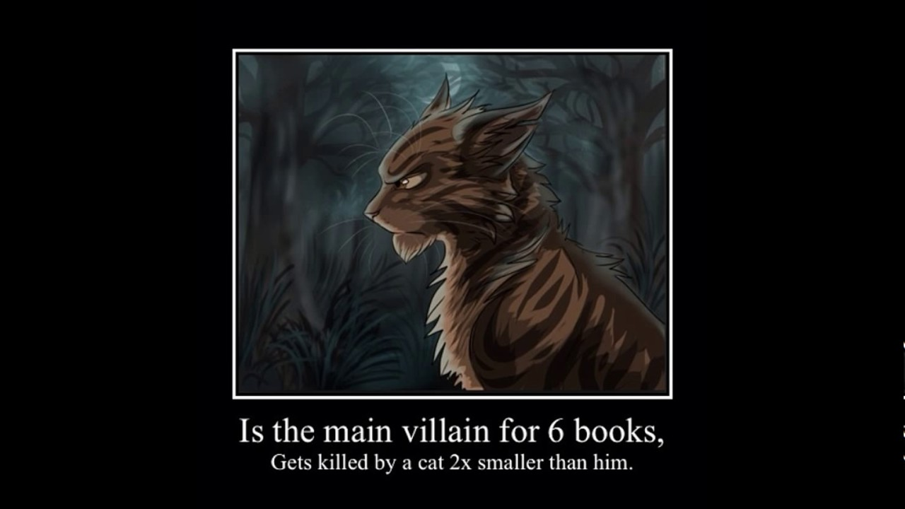 Funny Warrior Cat Memes Youtube