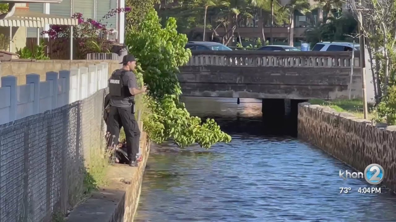 Honolulu police urge public to be vigilant, provide tips on how to be good witness - KHON2 News