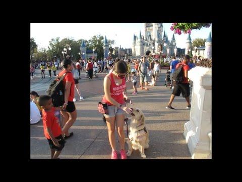 🏰 Disney World with a Service Dog! 🐾 (3/9/17)